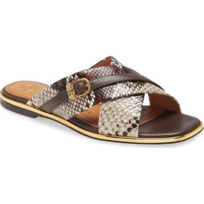 トリー バーチ TORY BURCH レディース サンダル・ミュール スライドサンダル シューズ・靴 Delaney Crisscross Slide Sandal Aspen Multi/Coconut