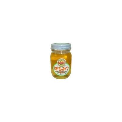 五十川養蜂園 国産はちみつ アカシヤ 500g ×2セット