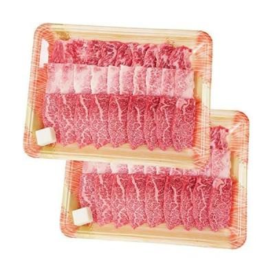 【肉のひぐち】 飛騨牛 メガ盛り 徳用 カルビ 焼肉用 1kg(500g×2パック) 1000g 和牛 牛肉 カルビ肉
