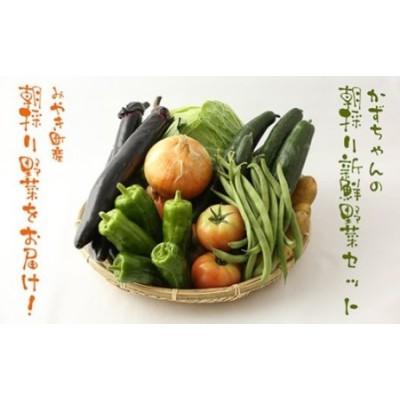 CC001_かずちゃんの朝採り新鮮野菜セット【みやき町産朝採り野菜をお届け】