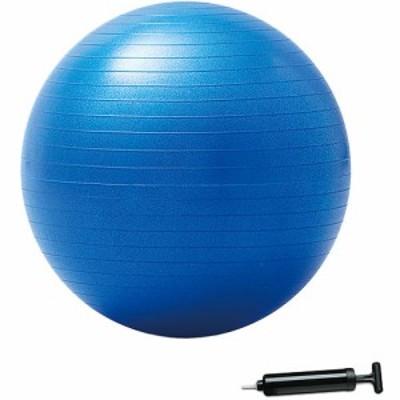ハタチ(HATACHI) 大きいバランスボール 55cm NH3031 【トレーニング用具 トレーニンググッズ 筋トレ 健康】
