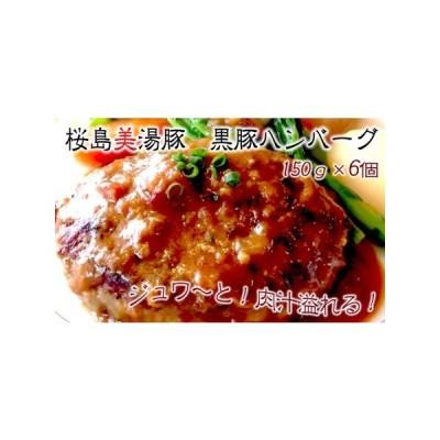 ふるさと納税 A1-3067/桜島美湯豚 黒豚ハンバーグ150g×6個 鹿児島県垂水市