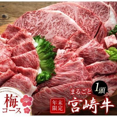 《年末年始お楽しみ企画》宮崎牛まるごと1頭(梅コース)合計2.8kg以上
