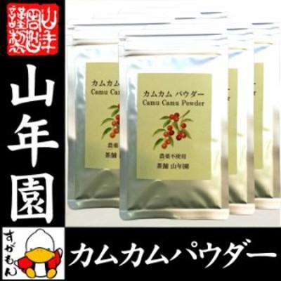 【無農薬】カムカムパウダー 50g×6袋セット ペルー産 粉末 ノンカフェイン ビタミンC ヨーグルト スムージー 苗 サプリ 健康茶 送料無料