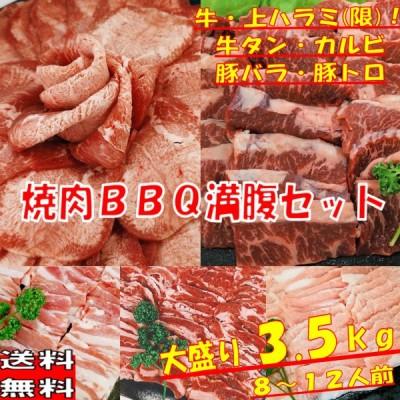 焼肉 肉 牛肉 焼肉セット 牛タン ハラミ バーベキュー 食材 ハラミ アメリカ産 牛カルビ バラ 牛上ハラミ 豚バラ 豚トロ 豚肉 3.5kg 送料無料 8〜12人前