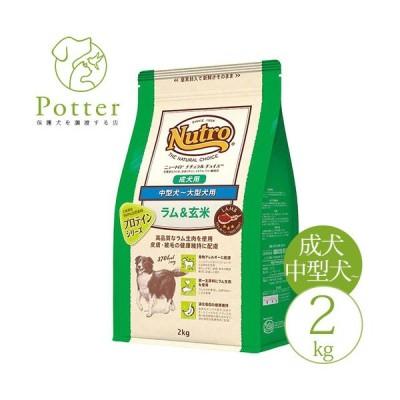 ナチュラルチョイス 成犬用 ラム&玄米 2kg  中型犬〜大型犬用