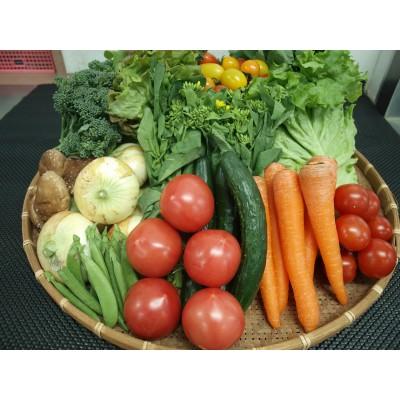 006-05じばさんずの野菜セット