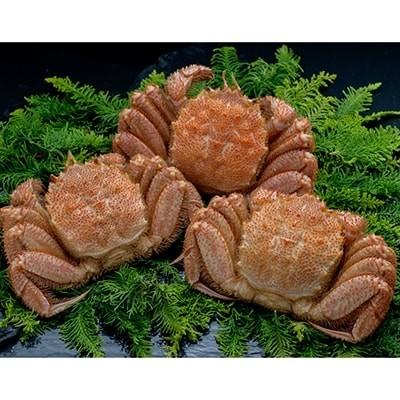 北海道産 ボイル毛蟹3尾1.0kg[Ta503-C131]