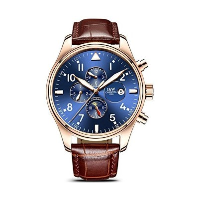 Swiss Watch Men's Complex Function Analog Automatic Mechanical Watch Stainless Steel Luminous Watch (Leather Band-Rose Gold Blue)(並行