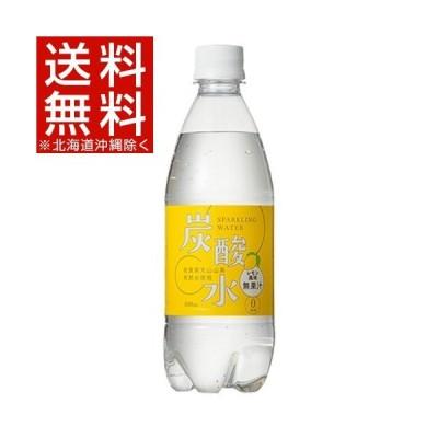 国産 天然水仕込みの炭酸水 レモン ( 500ml*24本入 )