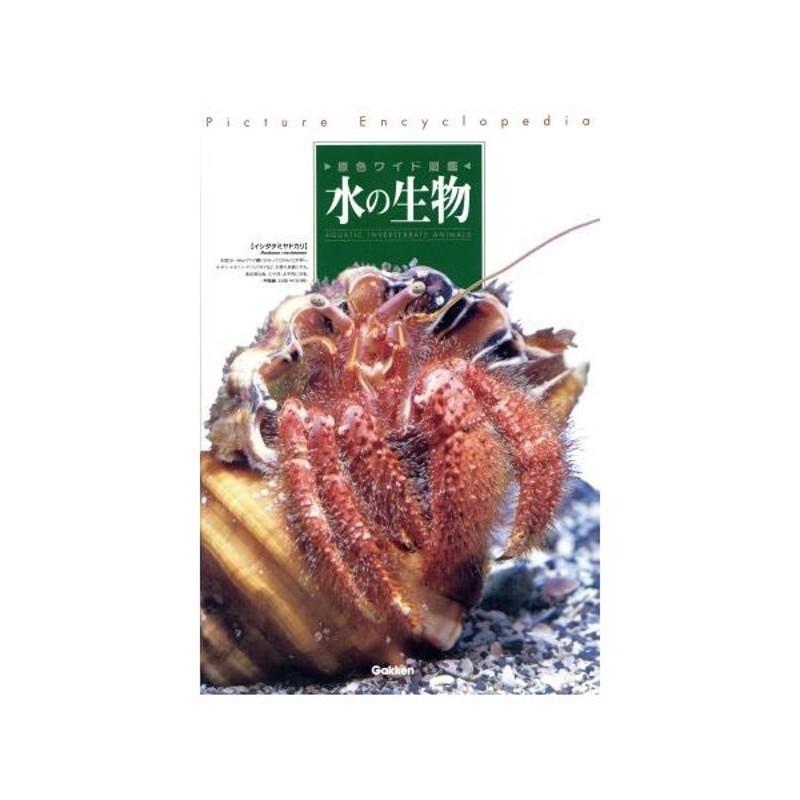 水の生物 改訂新版/内田亨(著者) 通販 LINEポイント最大0.5%GET ...