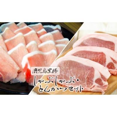 B2-1605/鹿児島黒豚しゃぶしゃぶ・とんかつセット