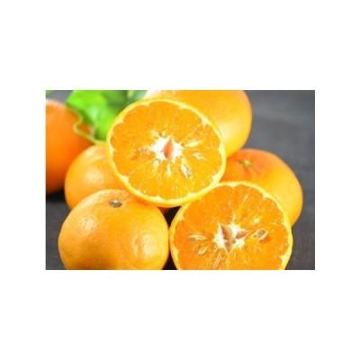 ふるさと納税 なるた果樹園の津の望(つののぞみ)家庭用5kg 高知県宿毛市