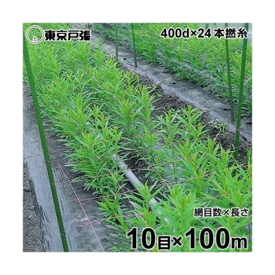 フラワーネット 400d×24本・撚糸 10目×長さ100m