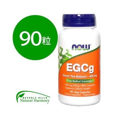 EGCg エピガロカテキンガレート グリーンティーエキス 90粒 NOW Foods ナウフーズ 緑茶 サプリ