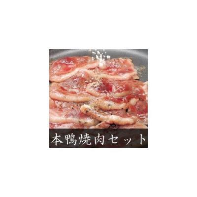 本鴨焼肉セット2人前(焼きそば付き) ギフト 送料無料(北海道・沖縄を除く)
