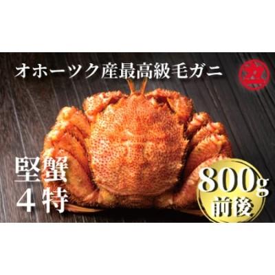 24-16 オホーツク産【四特】毛ガニ 800g前後×1尾