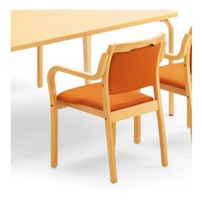 ダイニングチェアー いす イス 椅子 チェアー 肘掛け椅子 アームチェアー レザー 木製 シンプル モダン カジュアル ナチュラル ダイニング レストラン 送料無料