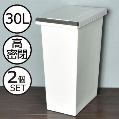 ゴミ箱 ごみ箱 ダストボックス 30リットル 密閉 密封 防臭 おしゃれ フタ付き プッシュ式 臭わない 日本製 北欧 ( エバンMP密閉プッシュペール 30L 2個セット)