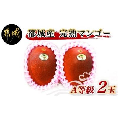 【先行受付!】都城産完熟マンゴー(A等級 2玉)_AC-0101