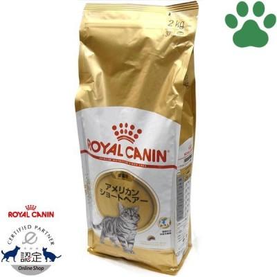 正規品 ロイヤルカナン 猫ドライ アメリカンショートヘアー 2kg 成猫用(12か月から12歳) 猫種別 キャットフード ドライ ロイカナ FBN