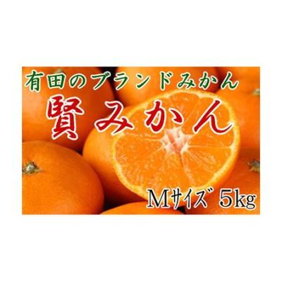 【2625-0104】有田のブランドみかん「賢みかん」5kg(Mサイズ・赤秀品)