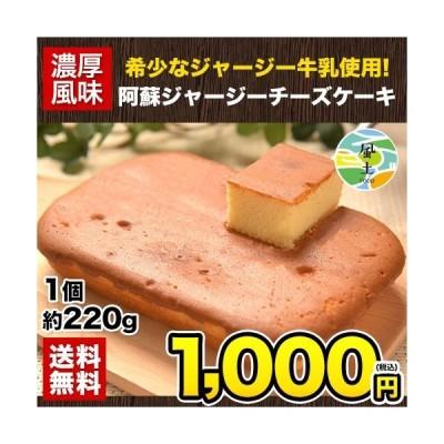 チーズケーキ 送料無料 阿蘇 ジャージー牛乳使用 1個 220g スイーツ 7-14営業日以内に出荷予定(土日祝日除く)