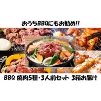 ハッピー!BBQセット ~焼肉5種 3人前コース~ 3箱セット