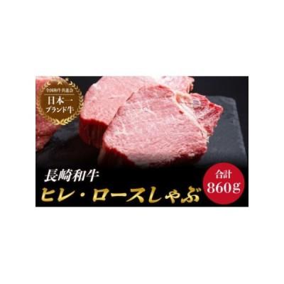 ふるさと納税 BAJ018 ヒレステーキ・ロースしゃぶしゃぶ セット 長崎県東彼杵町