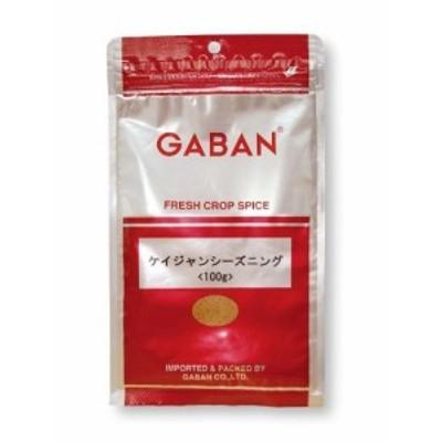 【メール便送料無料】 GABAN スパイス ケイジャンシーズニング (袋) 100g   【ミックススパイス ハウス食品 香辛料 パウダー 業
