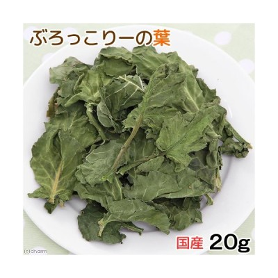 国産 ブロッコリーの葉 20g 小動物のおやつ お一人様1点限り