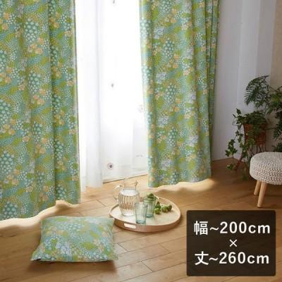 2級遮光カーテン スミノエ デザインライフ OHANA BATAKE オハナ バタケ ライトグリーン 幅〜200cm×丈〜260cm