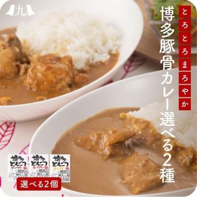 博多とんこつカレー お試し 2個セット 九州産 牛肉 豚肉 鶏肉 ご当地カレー 180g×2食