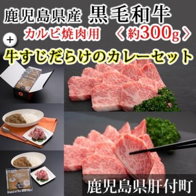 鹿児島県産黒毛和牛カルビ焼肉用<約300g>+牛すじだらけのカレーセット