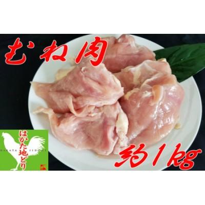 【Z8-006】はかた地どり むね肉 (約1kg)