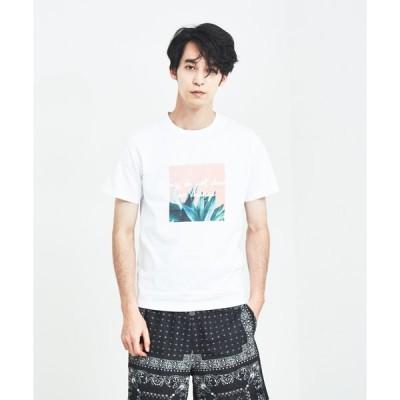 tシャツ Tシャツ 【展開店舗限定】グラフィックプリント半袖Tシャツ