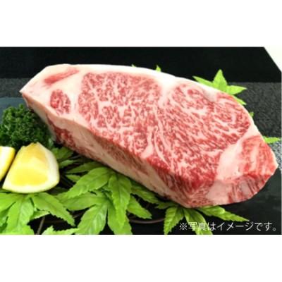 E-151 【佐賀牛】ロースブロック(タタキ・ローストビーフ・焼肉等)500g