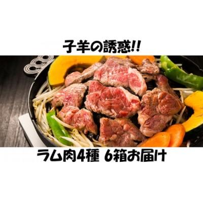 子羊の味わい ~4種のラム肉 6箱セット~
