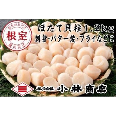【北海道根室産】刺身用ほたて600g×2P〈1.2kg〉 A-16021
