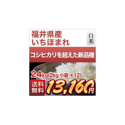 白米 福井県産 いちほまれ 特A評価 24kg(2kg×12袋)令和2年(2020年) 米袋は真空包装【即日出荷】