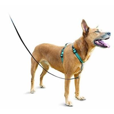 【送料無料】PetSafe(ペットセーフ) 3 in 1 ハーネス ティール(グリーン) Mサイズ
