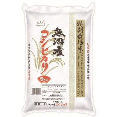 特別栽培米魚沼産コシヒカリ 5Kg お米 お取り寄せ お土産 ギフト プレゼント 特産品