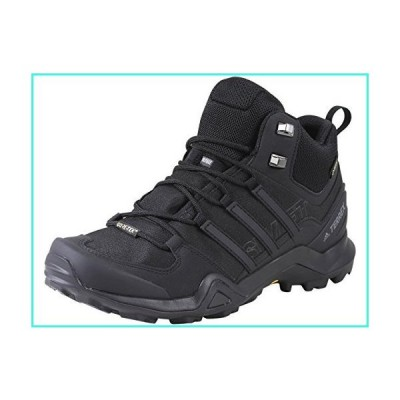 【新品】adidas outdoor Terrex Swift R2 Mid GTX Black/Black/Black 11(並行輸入品)