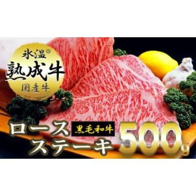 020C070 氷温熟成牛 ロースステーキ【黒毛和牛】(2枚で合計500g)