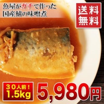 送料無料【国産サバの味噌煮 / 大容量1.5kg 30人前!】おふくろの味!魚屋さんがガチで作った新鮮鯖の味噌煮【お弁当】【冷凍】