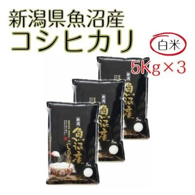 米 お米 白米 15kg  コシヒカリ 新潟県 魚沼産  5kg×3袋 令和2年産 送料無料