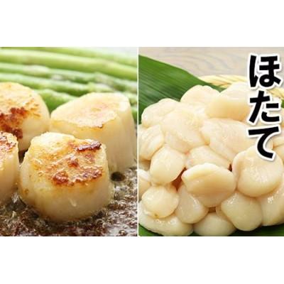 【北海道根室産】お刺身用ほたて貝柱1.6kg A-10057