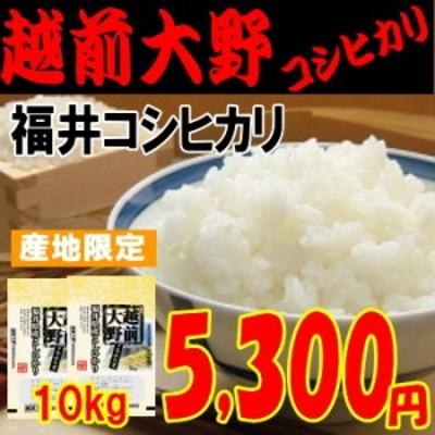 越前大野コシヒカリ(福井コシヒカリ)10kg もっちり・甘め 玄米,白米,分搗き選択可能