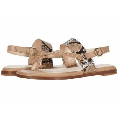 コールハーン レディース サンダル シューズ G.OS Anica Thong Sandal Amphora Leather/Tonal Exotic Snake Print Leather