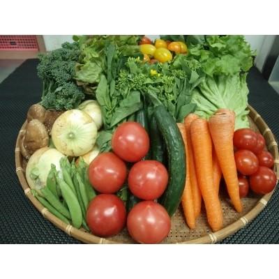 じばさんずの野菜セット